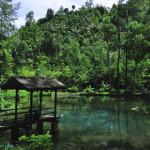 Wisata Rambut Monte Blitar, Foto yang Instagramable Abis Deh di Sini!