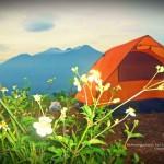 Jalur Pendakian Gunung Penanggungan Malang, Favoritnya Para Pendaki Pemula