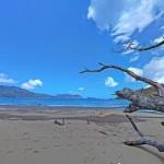 Pantai Bandealit Jember, Pantai Alami yang Masih Jarang Terjamah Manusia
