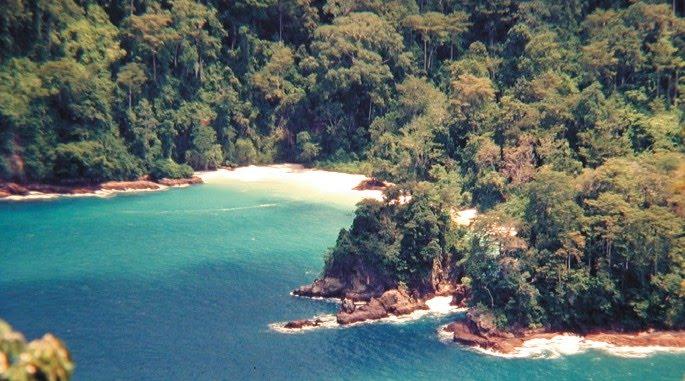 Pantai Bandealit Jember