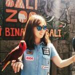 Kebun Binatang Bali ( Bali Zoo Park ), Pilihan Wisata Keluarga yang Menyenangkan