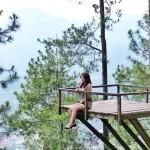 Omah Kayu Kota Batu Malang, Sensasi Unik Menginap di Rumah Pohon