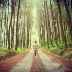 Top Selfie Pinusan Kragilan, Hutan Pinus Kekinian di Magelang