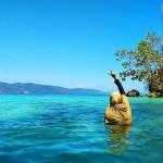 Teluk Biru Banyuwangi, Surga Tersembunyi Tempat Snorkeling Favorit