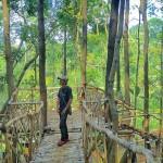 Seribu Batu Songgo Langit Mangunan, Wisata Kekinian di Yogyakarta