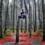 Hutan Pinus Kayon Semarang, Wisata Foto Instagramable Keren di Jawa Tengah
