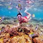 Pantai Nglambor Gunungkidul, Pantai Snorkeling Menakjubkan di Yogyakarta