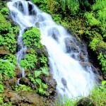 Air Terjun Kali Pancur Semarang, Wisata Alam Jawa Tengah yang Pemandangannya Bikin Adem