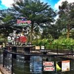 Cimory On The Valley Semarang – Wisata Lengkap, dari Edukasi hingga Kuliner