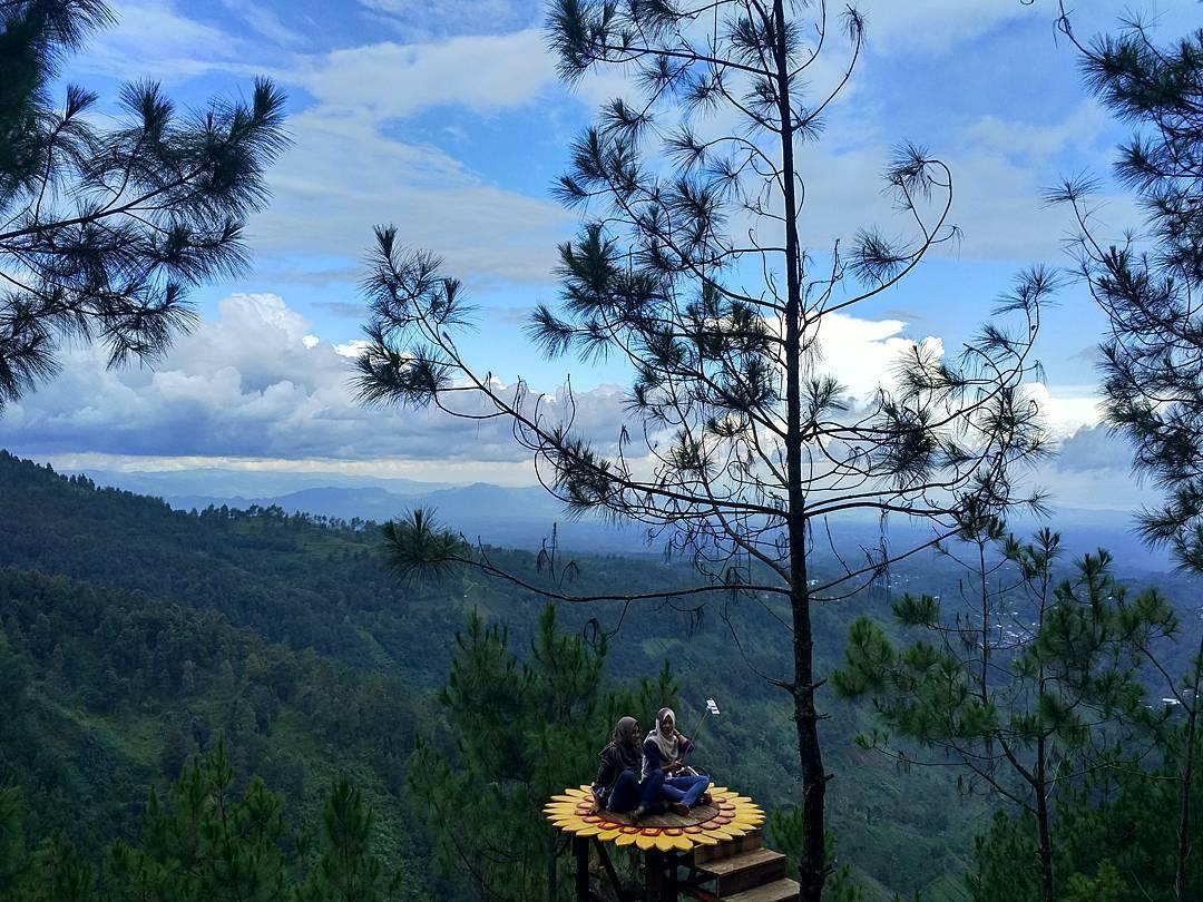 Rumah Pohon Banyu Anyep