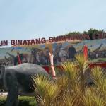 Menghabiskan Waktu Liburan Seru di Kebun Binatang Surabaya