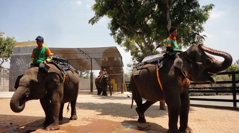 Maharani Zoo dan Goa Maharani