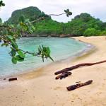 Pantai Clungup Malang, Pantai dengan Suasana yang Tenang dan Asri di Jawa Timur