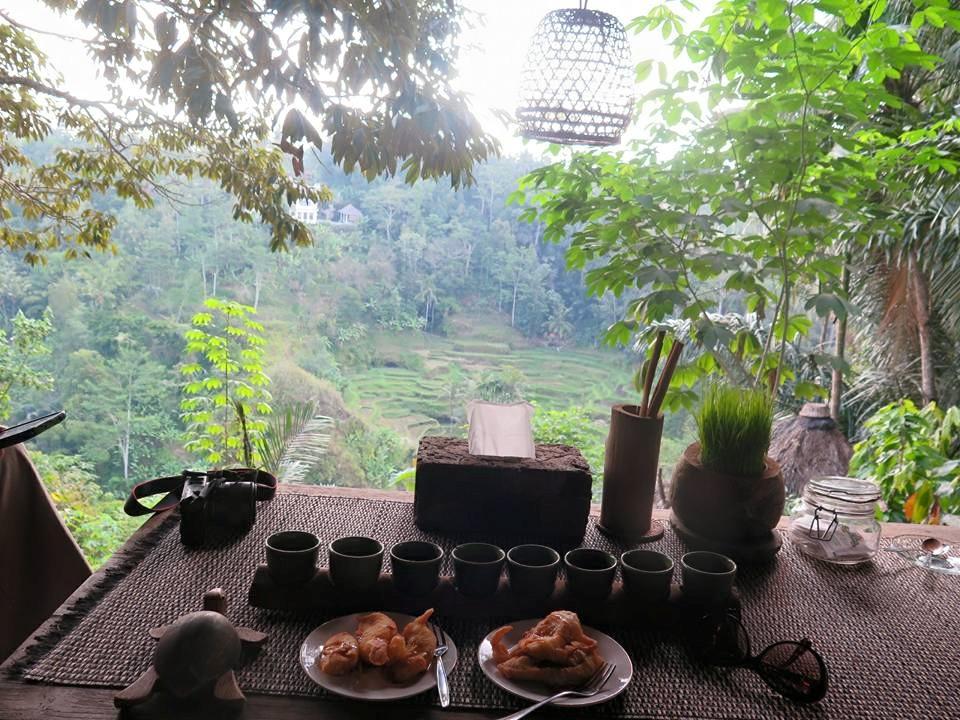 Bali Pulina Agrowisata Ubud