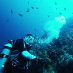 Pantai Tulamben Karangasem, Pantai dengan Keindahan Alam Bawah Laut Terbaik di Bali