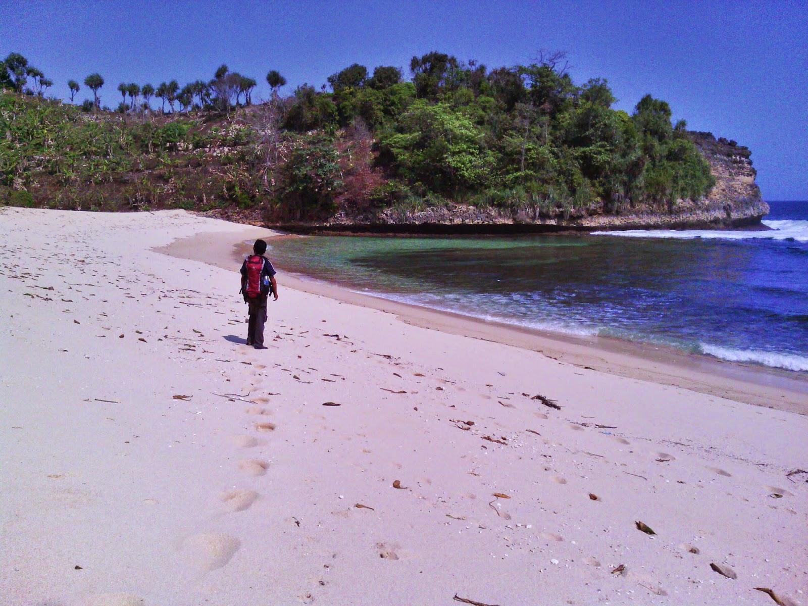 Pantai Ngudel Malang Selatan