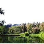 Situ Sukarame, Menawarkan Pemandangan Indah nan Cantik