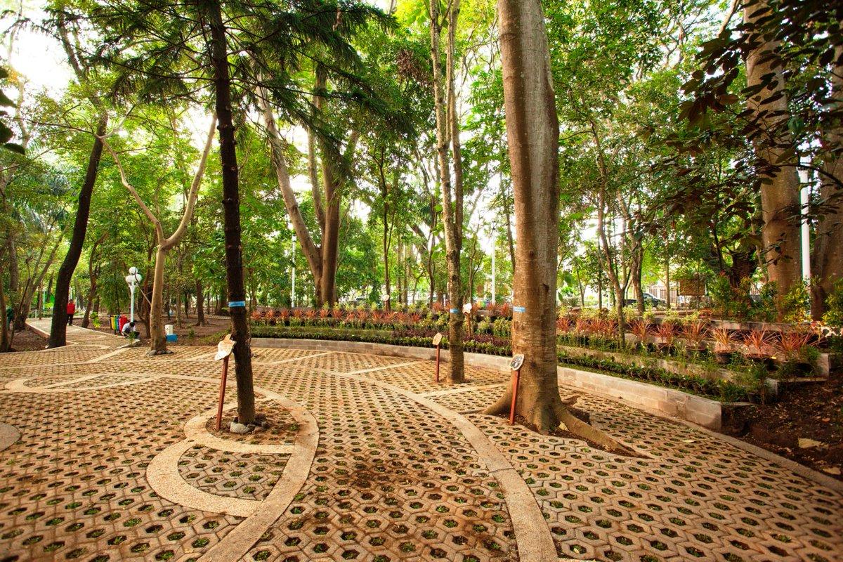 Hutan Kota Malabar Malang