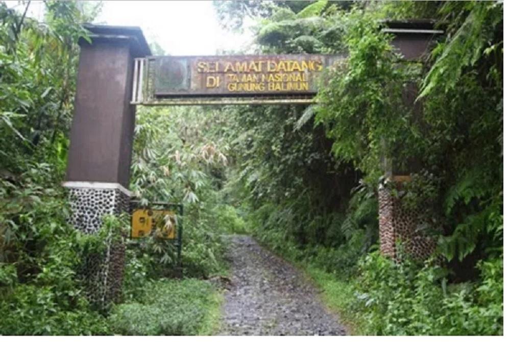 Rute Menuju Taman Nasional Gunung Halimun Salak