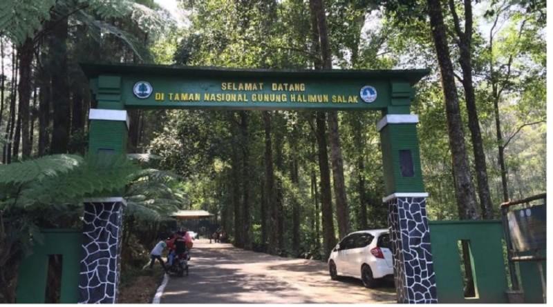 Taman Nasional Gunung Halimun Salak, Tempat Menikmati Petualangan Alam yang Menyenangkan