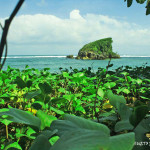 Pantai Kondang Merak Malang, Pantai dengan Ombak Tenang yang Cocok untuk Pencinta Snorkeling