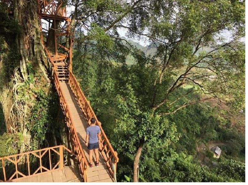 Rumah Pohon Dan Jembatan Kayu Gantung Curug Ciherang Jonggoll