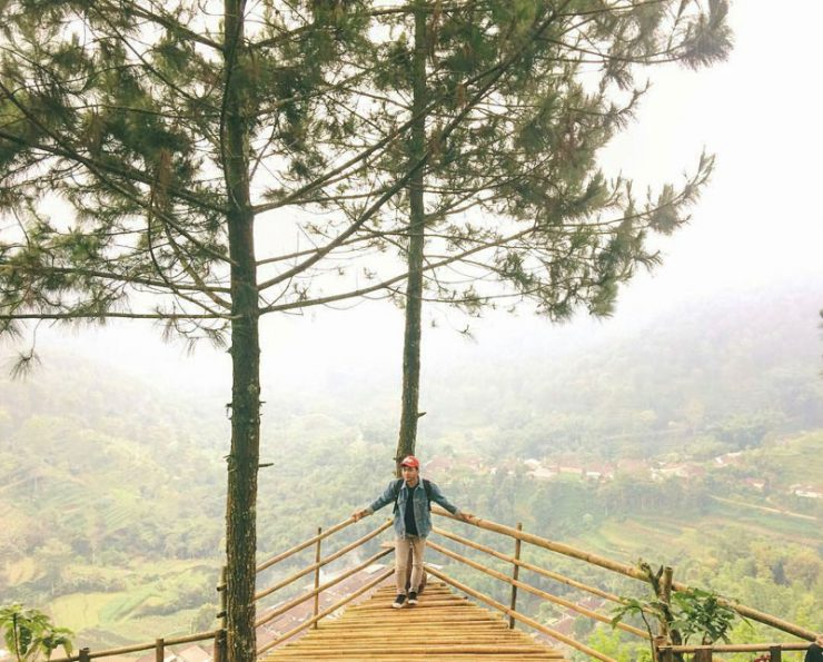 Goa Pinus Batu