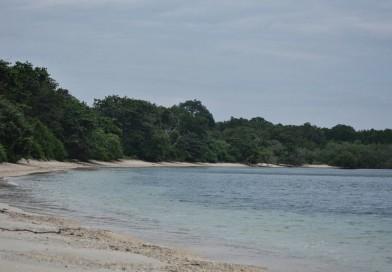 Pantai Balanan Situbondo, Surga Pantai Tersembunyi yang Jarang Terjamah Tangan Manusia
